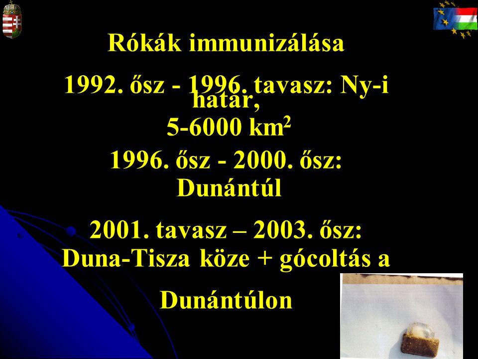 Rókák immunizálása 1992. ősz - 1996. tavasz: Ny-i határ, 5-6000 km 2 1996. ősz - 2000. ősz: Dunántúl 2001. tavasz – 2003. ősz: Duna-Tisza köze + gócol