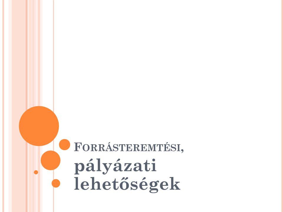 F IATALOK LENDÜLETBEN - 2012 Alprogramok (szegénység, kultúra, munkanélküliség, egészséges életmód, vállalkozó szellem, kreativitás stb.