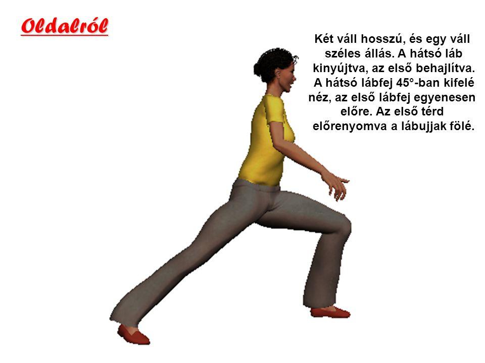 Oldalról Két váll hosszú, és egy váll széles állás. A hátsó láb kinyújtva, az első behajlítva. A hátsó lábfej 45°-ban kifelé néz, az első lábfej egyen