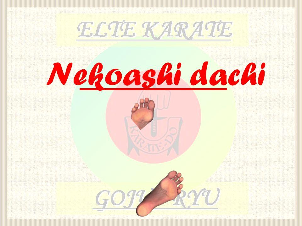 Nekoashi dachi