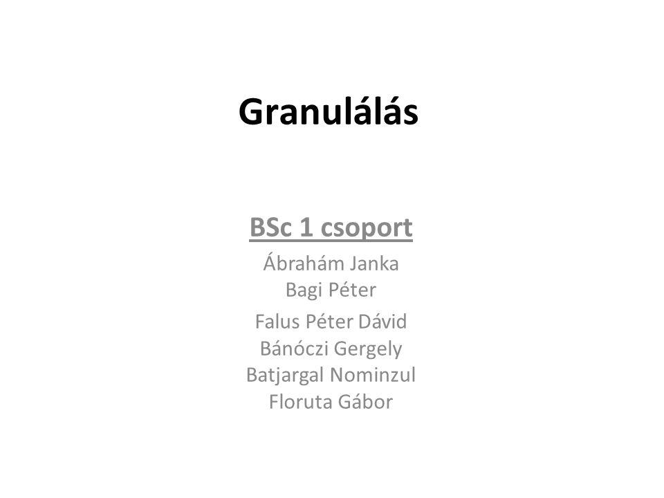 Granulálás BSc 1 csoport Ábrahám Janka Bagi Péter Falus Péter Dávid Bánóczi Gergely Batjargal Nominzul Floruta Gábor
