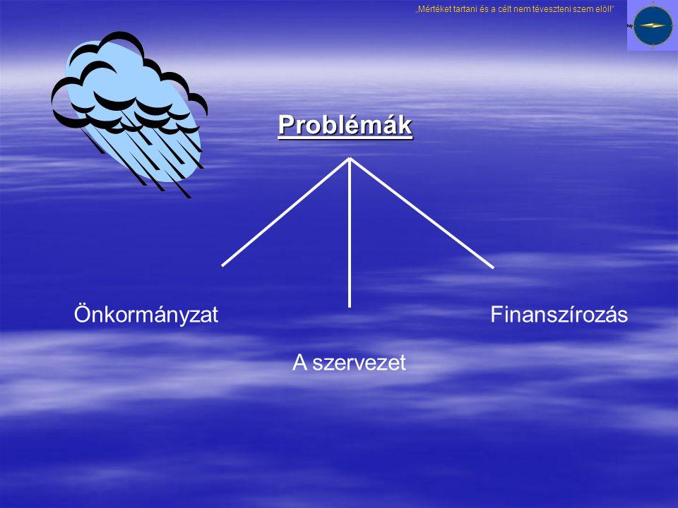 Problémák Önkormányzat A szervezet Finanszírozás