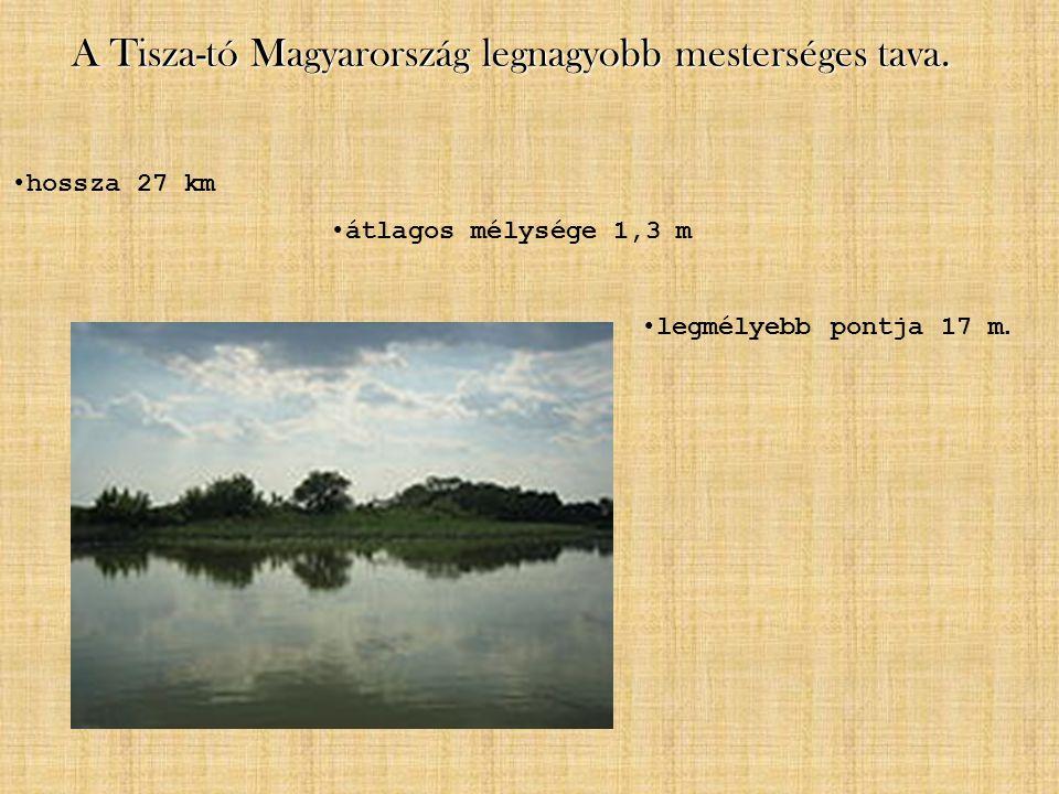 A Tisza-tó Magyarország legnagyobb mesterséges tava. hossza 27 km átlagos mélysége 1,3 m legmélyebb pontja 17 m.