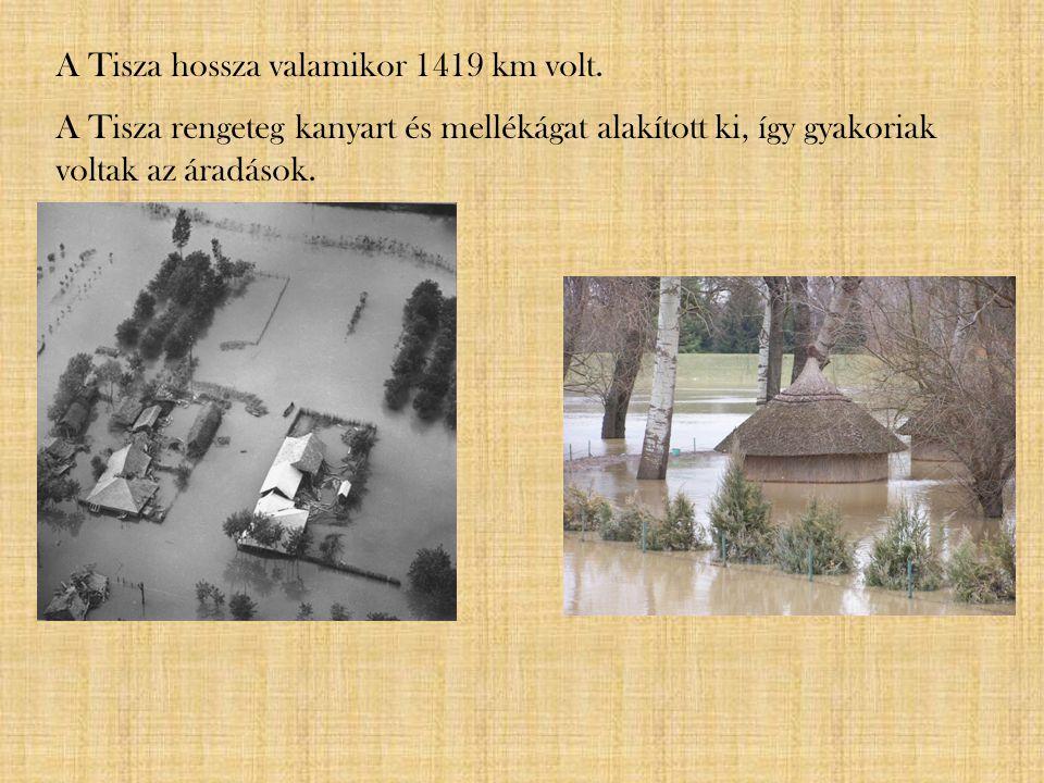 A Tisza hossza valamikor 1419 km volt. A Tisza rengeteg kanyart és mellékágat alakított ki, így gyakoriak voltak az áradások.