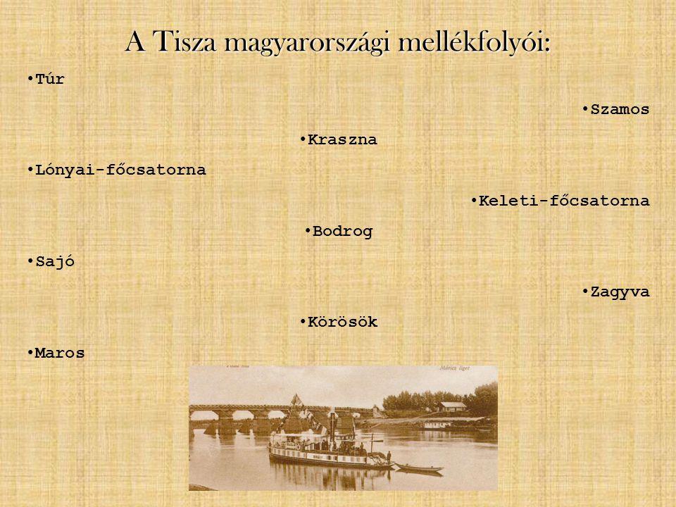 A Tisza magyarországi mellékfolyói: Túr Szamos Kraszna Lónyai-főcsatorna Keleti-főcsatorna Bodrog Sajó Zagyva Körösök Maros