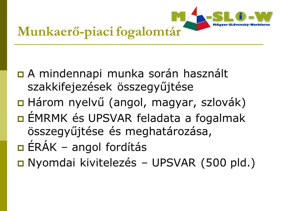  A mindennapi munka során használt szakkifejezések összegyűjtése  Három nyelvű (angol, magyar, szlovák)  ÉMRMK és UPSVAR feladata a fogalmak összegyűjtése és meghatározása,  ÉRÁK – angol fordítás  Nyomdai kivitelezés – UPSVAR (500 pld.) Munkaerő-piaci fogalomtár