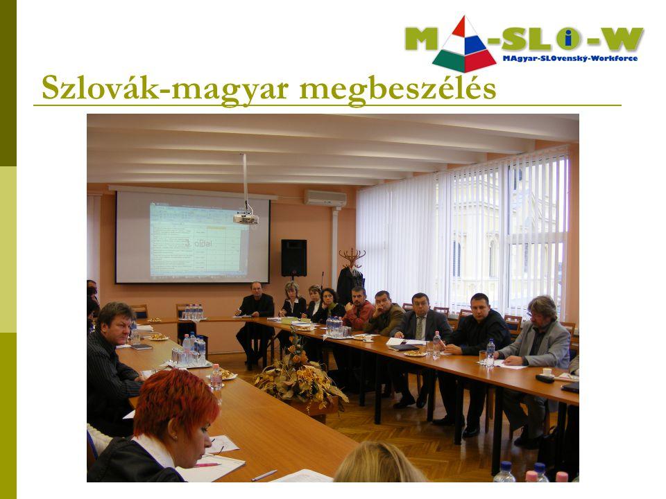 Szlovák-magyar megbeszélés