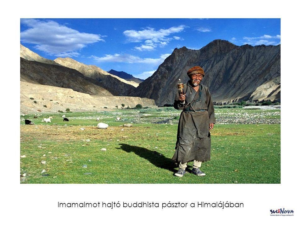 Imamalmot hajtó buddhista pásztor a Himalájában