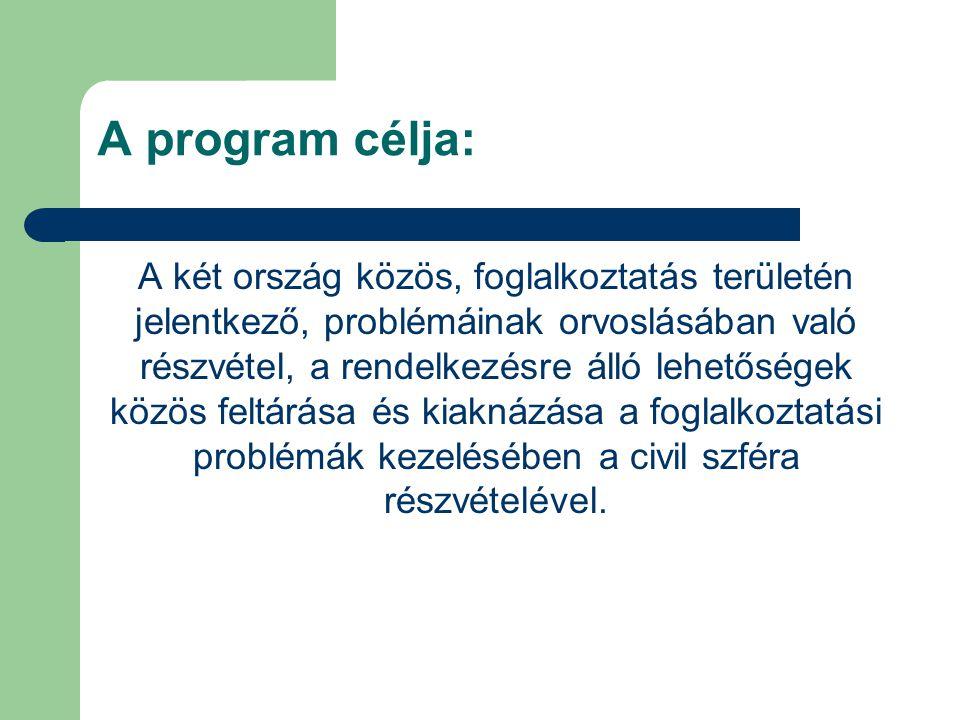 A program célja: A két ország közös, foglalkoztatás területén jelentkező, problémáinak orvoslásában való részvétel, a rendelkezésre álló lehetőségek közös feltárása és kiaknázása a foglalkoztatási problémák kezelésében a civil szféra részvételével.