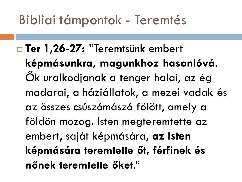 """Bibliai támpontok - Teremtés  Ter 1,26-27: """"Teremtsünk embert képmásunkra, magunkhoz hasonlóvá. Ők uralkodjanak a tenger halai, az ég madarai, a házi"""