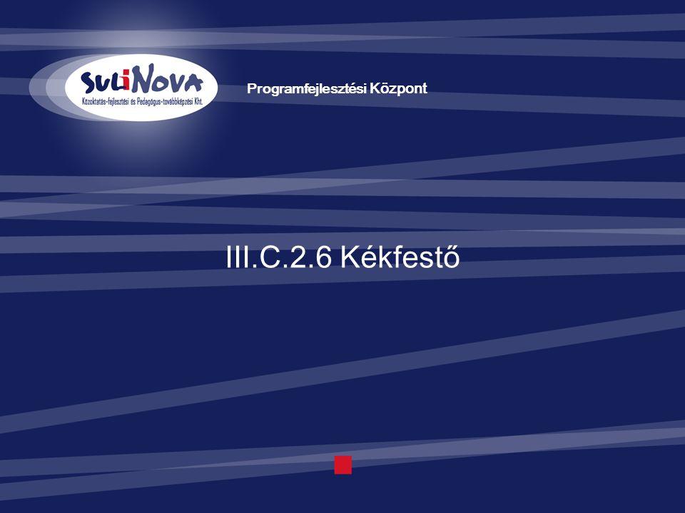 III.C.2.6 Kékfestő Programfejlesztési Központ