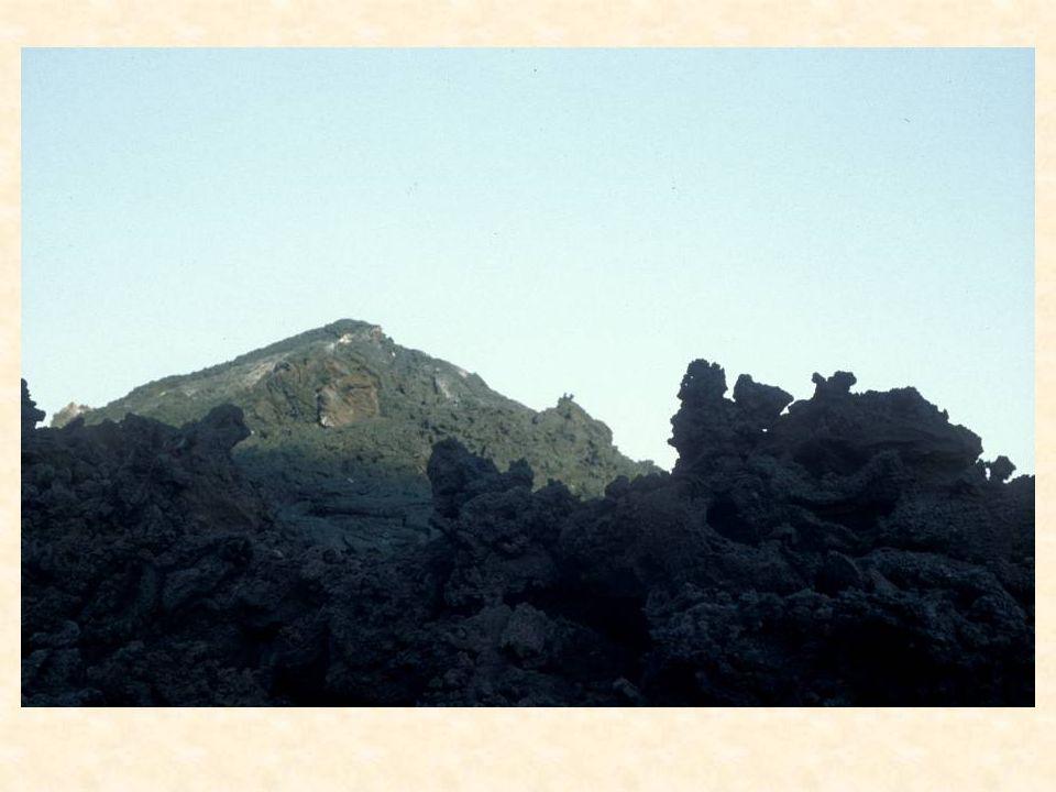 etnaa