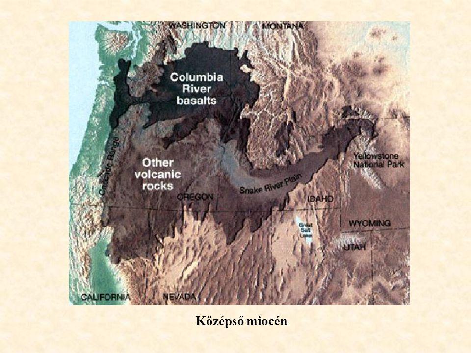 Középső miocén