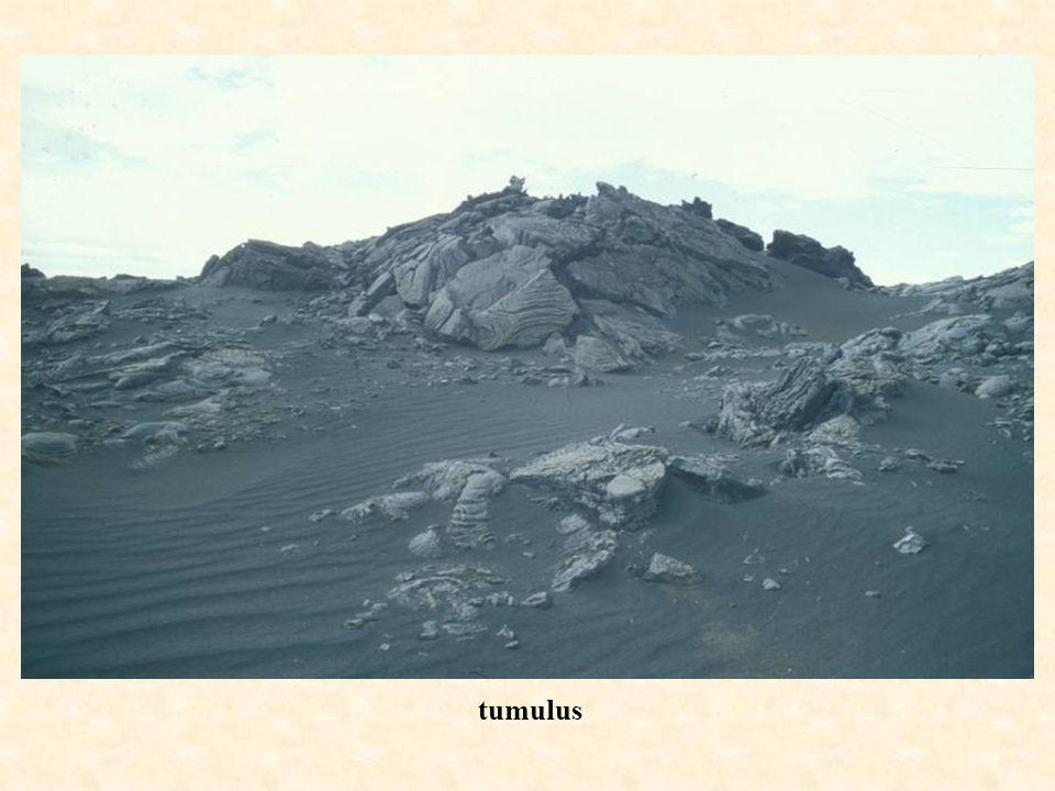 tumul us