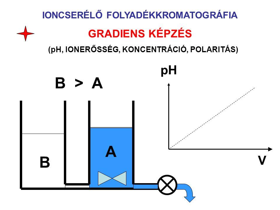 IONCSERÉLŐ FOLYADÉKKROMATOGRÁFIA GRADIENS KÉPZÉS (pH, IONERŐSSÉG, KONCENTRÁCIÓ, POLARITÁS) B A pH V B > A
