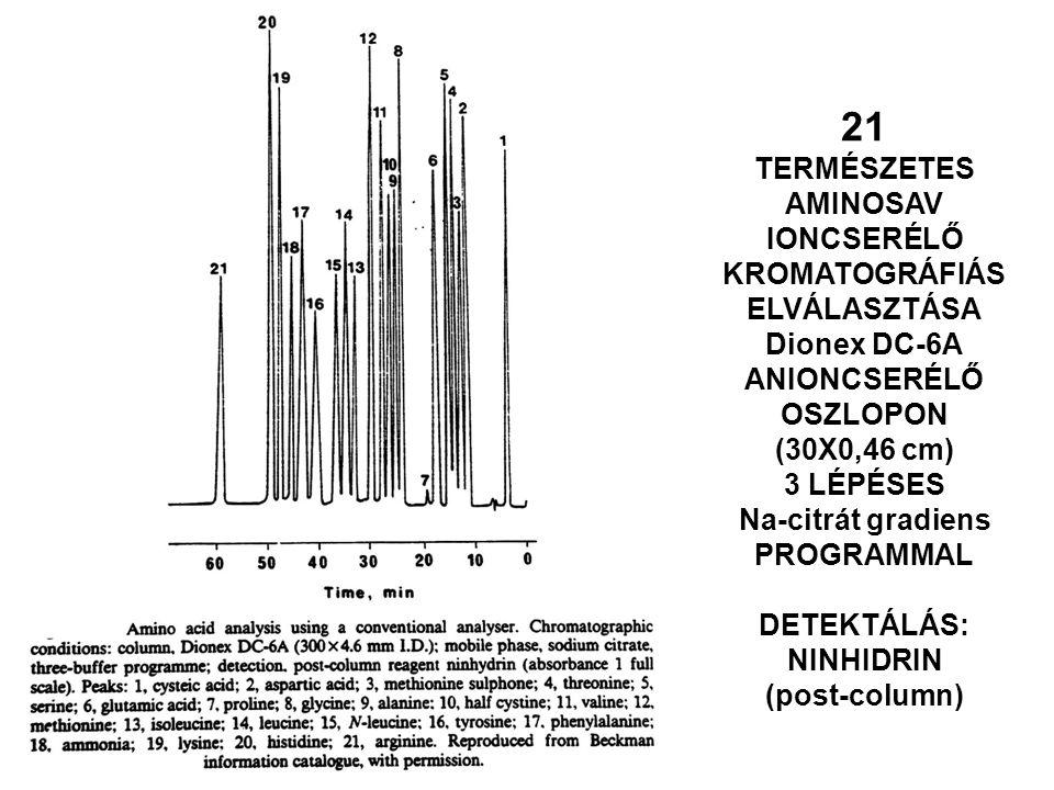 21 TERMÉSZETES AMINOSAV IONCSERÉLŐ KROMATOGRÁFIÁS ELVÁLASZTÁSA Dionex DC-6A ANIONCSERÉLŐ OSZLOPON (30X0,46 cm) 3 LÉPÉSES Na-citrát gradiens PROGRAMMAL