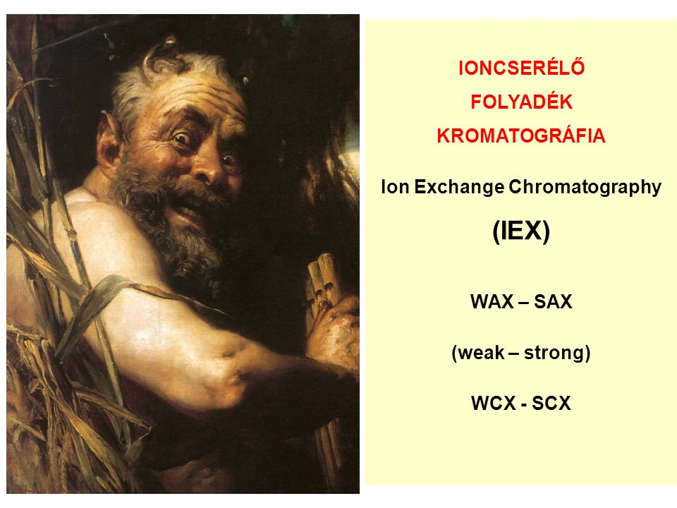 IONCSERÉLŐ FOLYADÉK KROMATOGRÁFIA Ion Exchange Chromatography (IEX) WAX – SAX (weak – strong) WCX - SCX