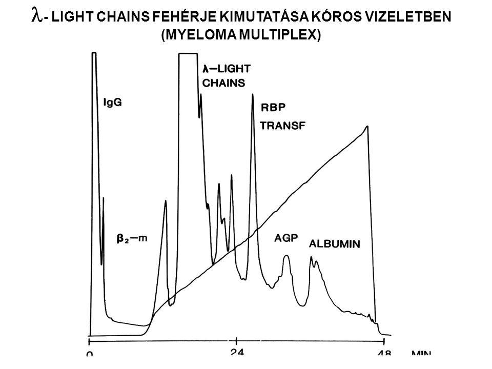- LIGHT CHAINS FEHÉRJE KIMUTATÁSA KÓROS VIZELETBEN (MYELOMA MULTIPLEX)