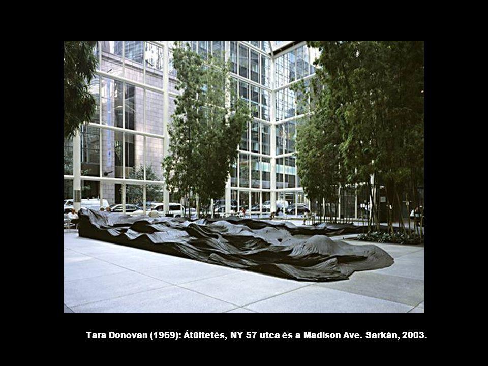 Tara Donovan (1969): Átültetés, NY 57 utca és a Madison Ave. Sarkán, 2003.