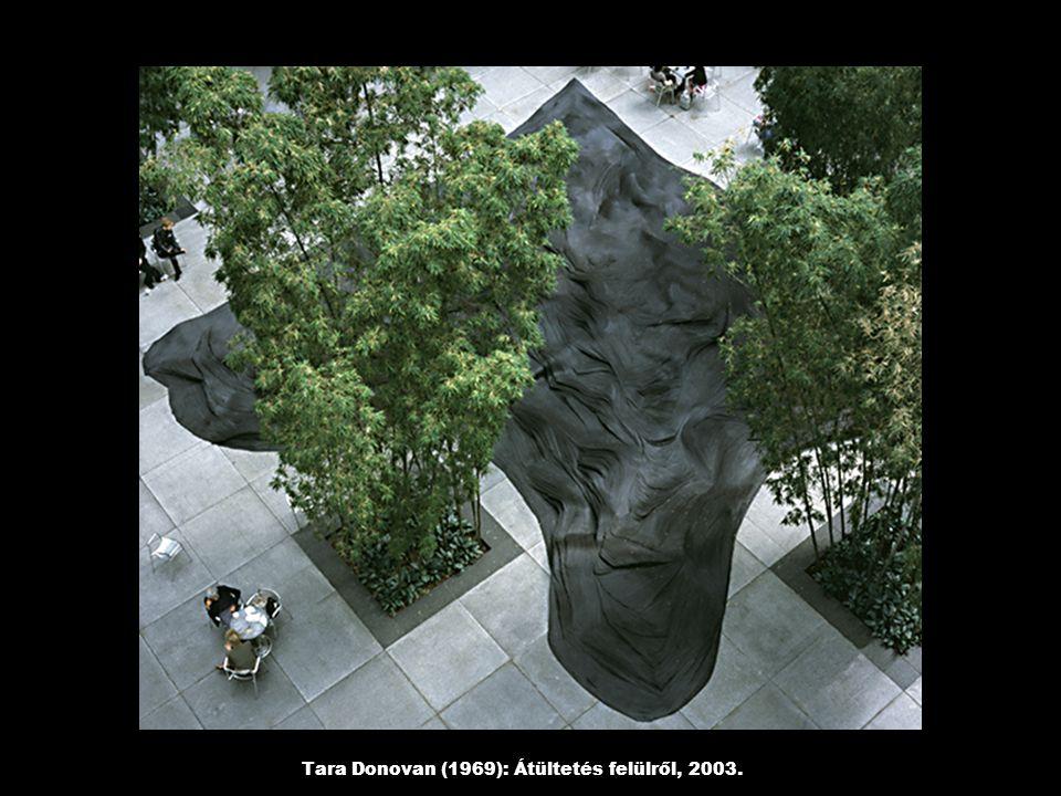 Tara Donovan (1969): Átültetés felülről, 2003.