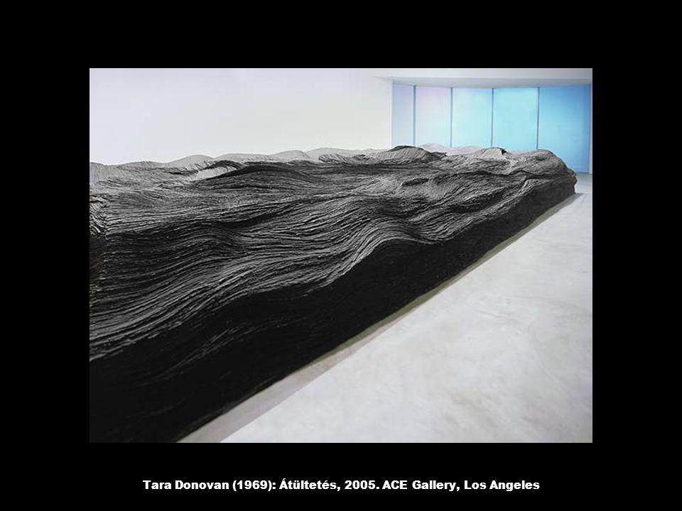 Tara Donovan (1969): Átültetés, 2005. ACE Gallery, Los Angeles