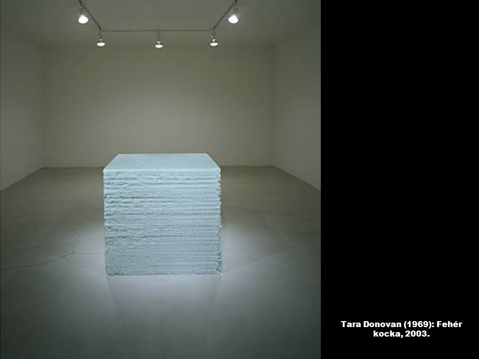 Tara Donovan (1969): Fehér kocka, 2003.