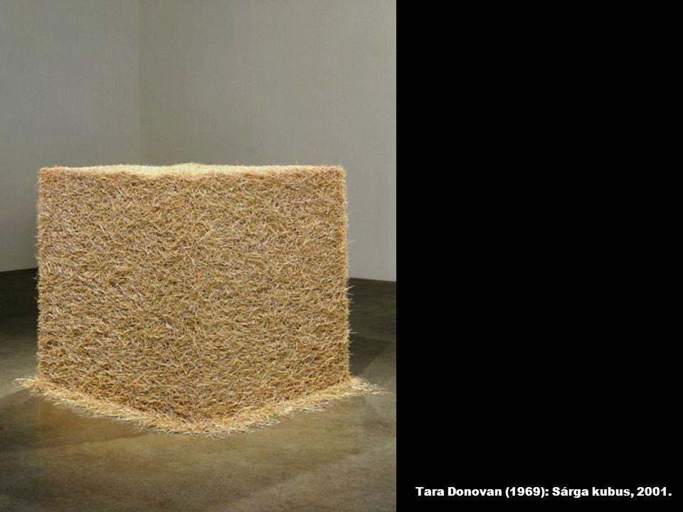 Tara Donovan (1969): Sárga kubus, 2001.