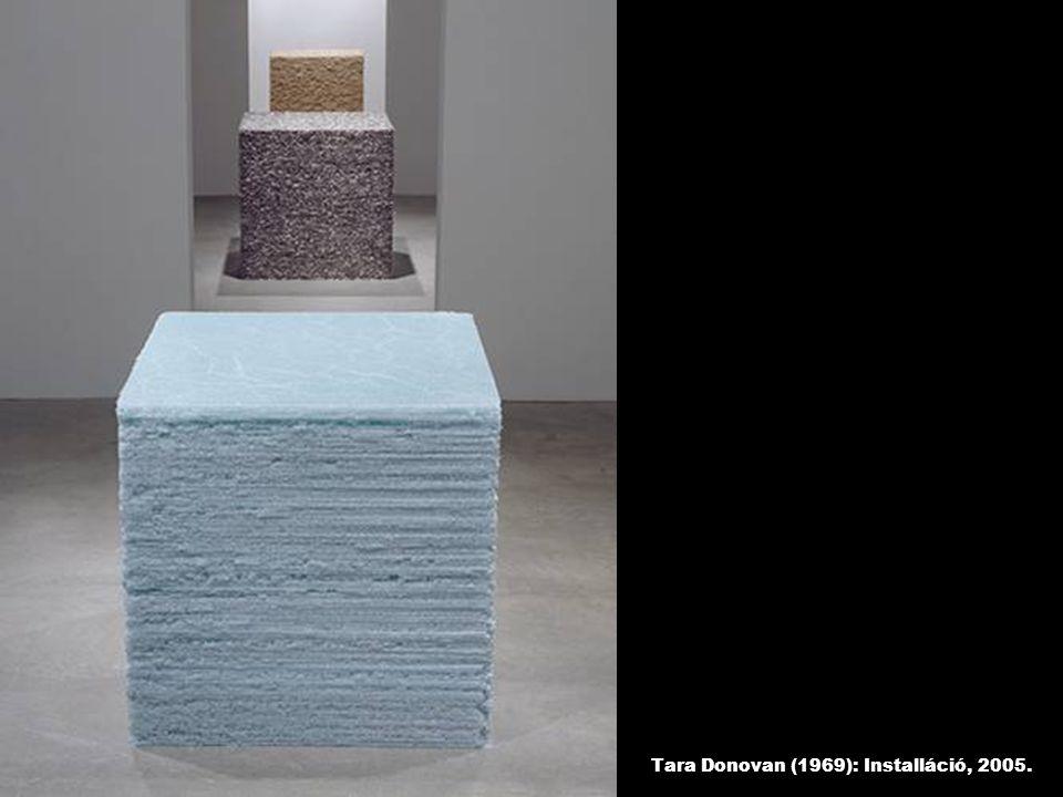Tara Donovan (1969): Installáció, 2005.