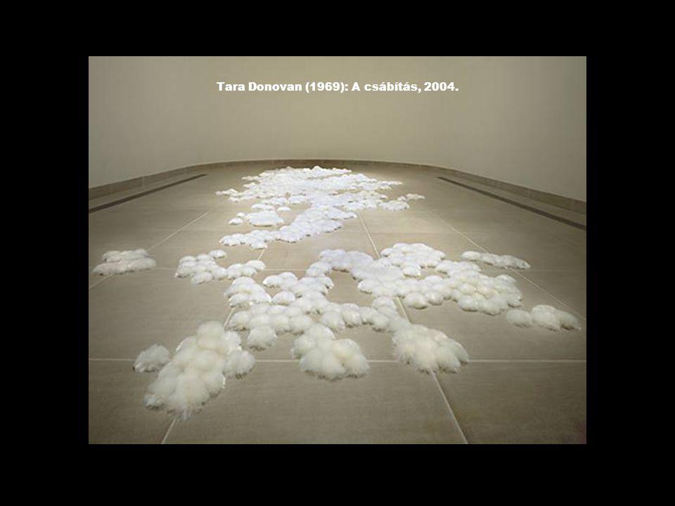 Tara Donovan (1969): A csábítás, 2004.