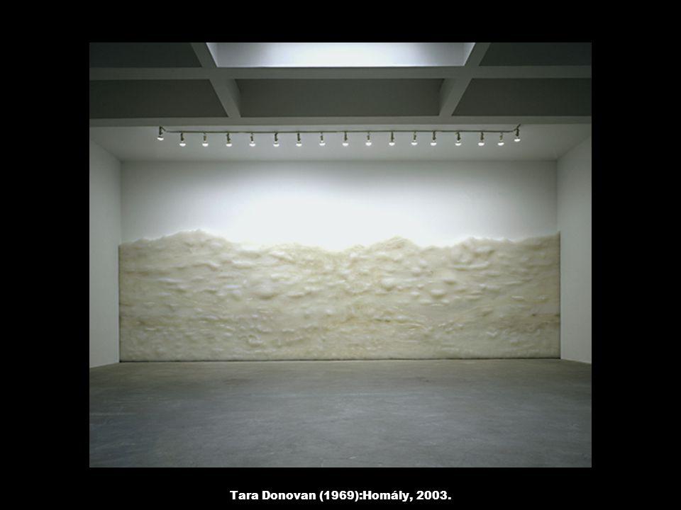 Tara Donovan (1969):Homály, 2003.