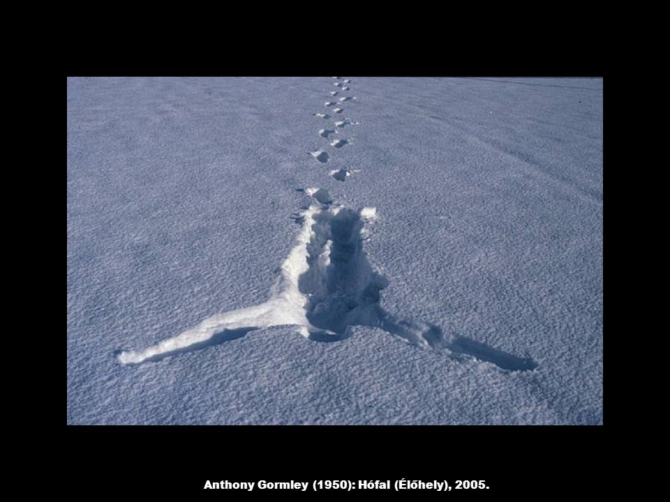Anthony Gormley (1950): Hófal (Élőhely), 2005.