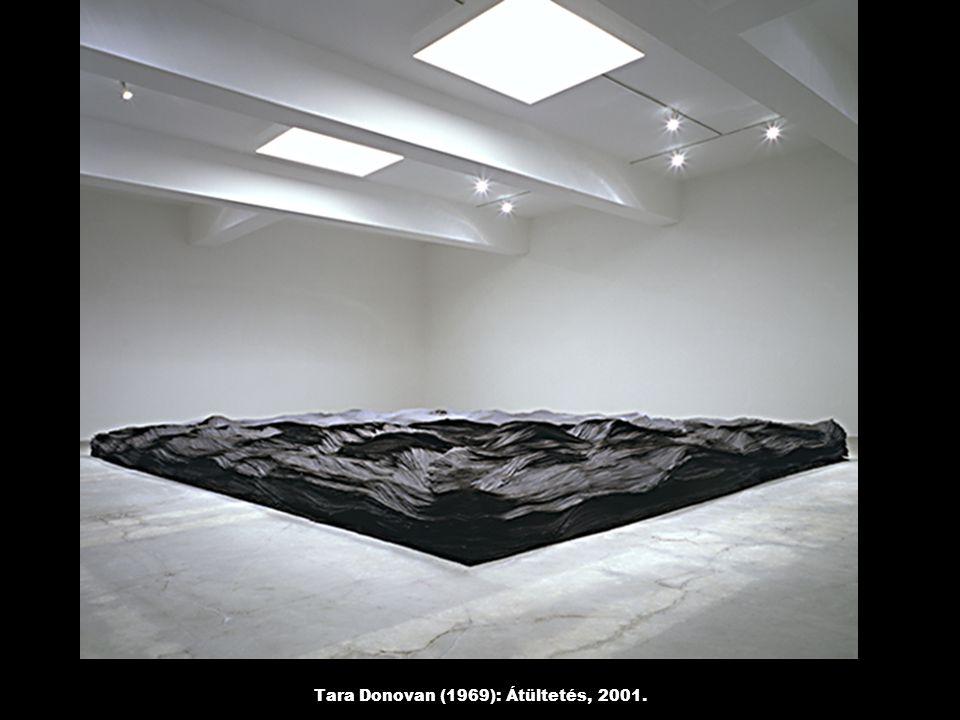 Tara Donovan (1969): Átültetés, 2001.