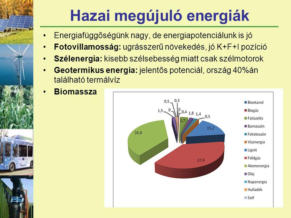 Hazai megújuló energiák Energiafüggőségünk nagy, de energiapotenciálunk is jó Fotovillamosság: ugrásszerű növekedés, jó K+F+I pozíció Szélenergia: kisebb szélsebesség miatt csak szélmotorok Geotermikus energia: jelentős potenciál, ország 40%án található termálvíz Biomassza