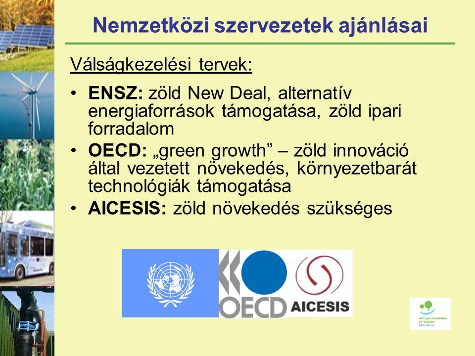 """Nemzetközi szervezetek ajánlásai Válságkezelési tervek: ENSZ: zöld New Deal, alternatív energiaforrások támogatása, zöld ipari forradalom OECD: """"green growth – zöld innováció által vezetett növekedés, környezetbarát technológiák támogatása AICESIS: zöld növekedés szükséges"""