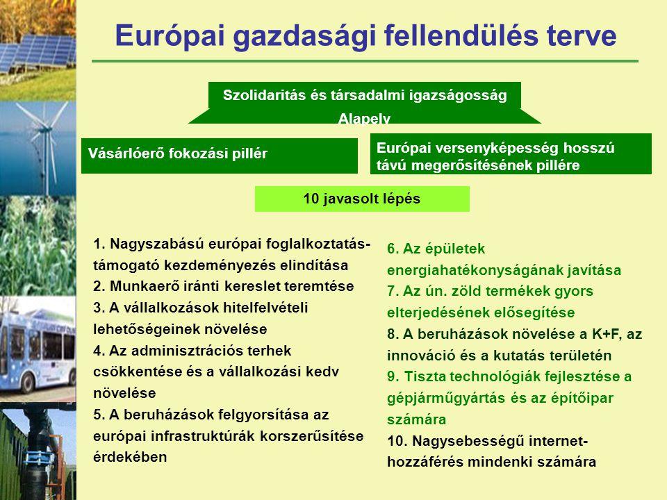 Európai gazdasági fellendülés terve Szolidaritás és társadalmi igazságosság Alapelv Vásárlóerő fokozási pillér Európai versenyképesség hosszú távú megerősítésének pillére 10 javasolt lépés 1.