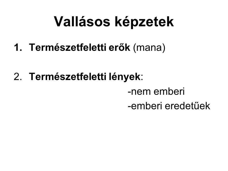 Vallási cselekvésrendszerek Wallace 4 fő vallási kultusza: 1.Egyéni 2.Sámánisztikus 3.Közösségi 4.Egyházi kultuszok