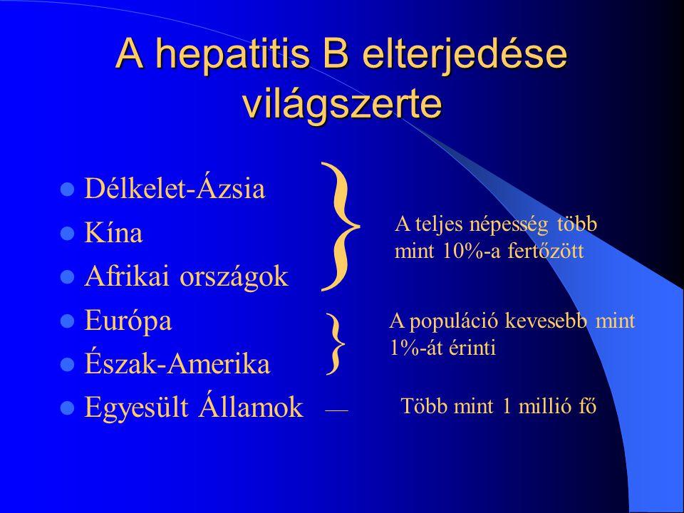 A hepatitis B elterjedése világszerte Délkelet-Ázsia Kína Afrikai országok Európa Észak-Amerika Egyesült Államok } A teljes népesség több mint 10%-a fertőzött } A populáció kevesebb mint 1%-át érinti Több mint 1 millió fő