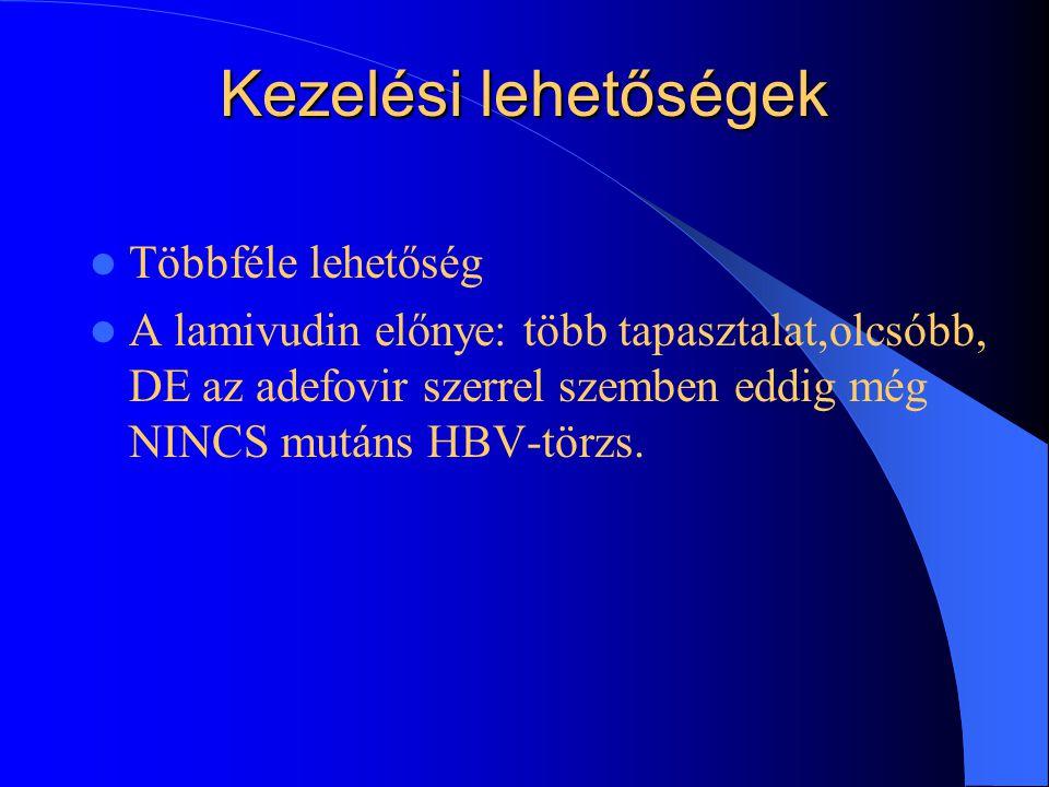 Az Adefovir-kezelés hatékonysága 59,YMDD-mutációt (HBV vírustörzs,vírus- DNS polimerázt kódológénje) hordozó vírussal fertőzött beteg 1.cs.:10mg/nap a