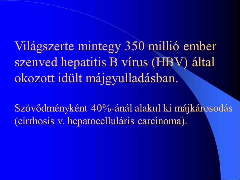 A hepatitis B elterjedése világszerte Délkelet-Ázsia Kína Afrikai országok Európa Észak-Amerika Egyesült Államok } A teljes népesség több mint 10%-a f