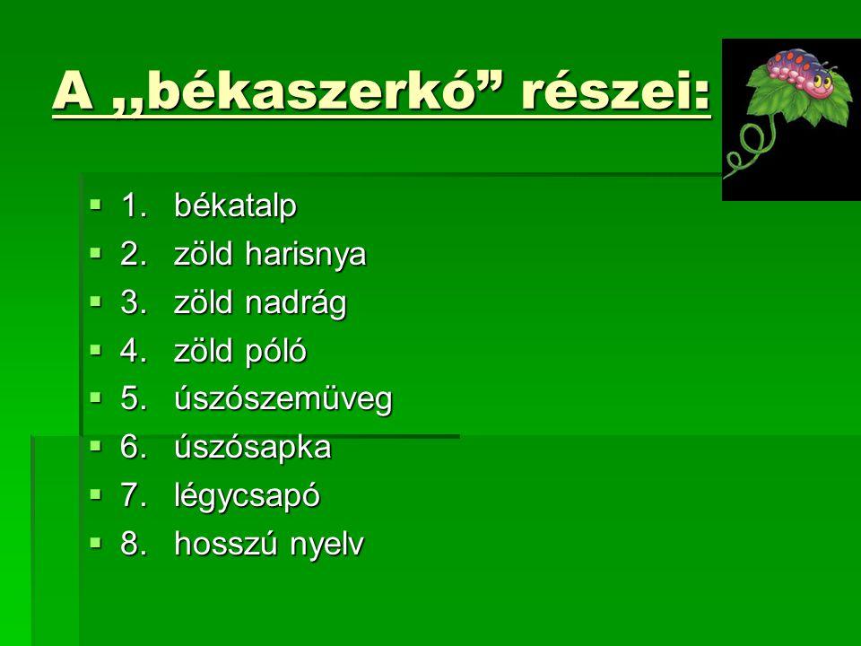 A,,békaszerkó részei:  1.békatalp  2.zöld harisnya  3.zöld nadrág  4.zöld póló  5.úszószemüveg  6.úszósapka  7.légycsapó  8.hosszú nyelv