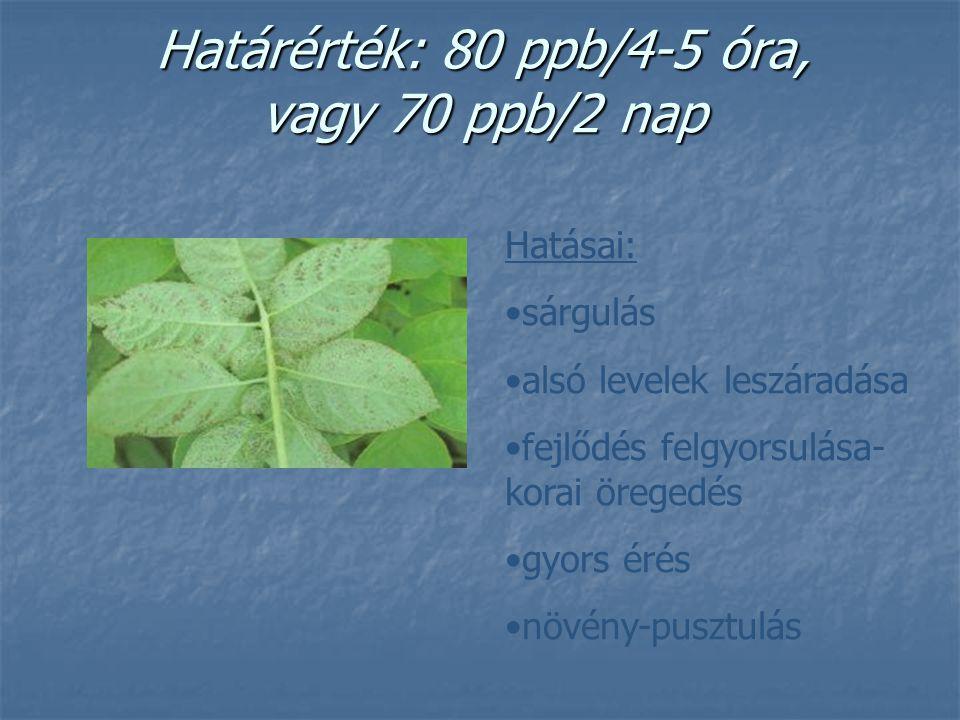 Határérték: 80 ppb/4-5 óra, vagy 70 ppb/2 nap Hatásai: sárgulás alsó levelek leszáradása fejlődés felgyorsulása- korai öregedés gyors érés növény-pusz