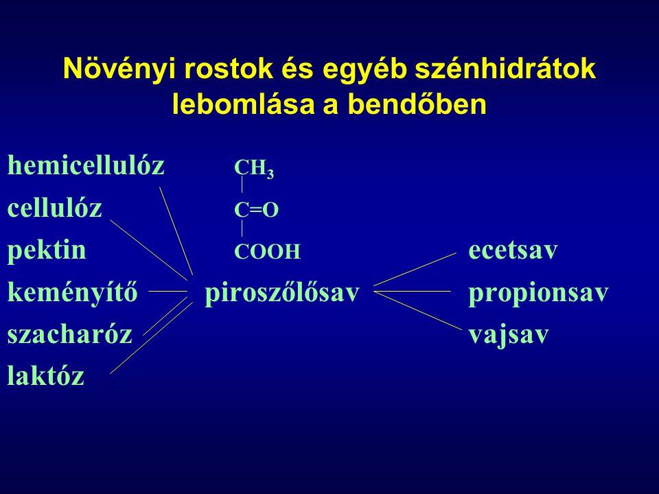 A takarmányadag összetételének hatása a bendő-fermentációra széna:abrak arány1:00,2:0,8sok cukor domináns szénhidrátcellulózkeményítőcukor baktérium szám 10 10 /ml bedőfolyadék 1,3 kicsi 1,6-5 nagy 1,3 kicsi bendő pH6,2-6,75,5-64,8-5,4 ecetsav0,660,40,3 propionsav0,220,40,25 vajsav0,090,150,25 tejsav0,030,050,2-0,3