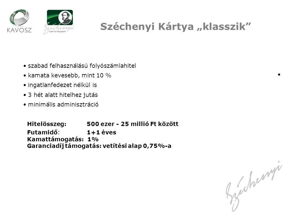 """Széchenyi Kártya """"klasszik"""" szabad felhasználású folyószámlahitel kamata kevesebb, mint 10 % ingatlanfedezet nélkül is 3 hét alatt hitelhez jutás mini"""