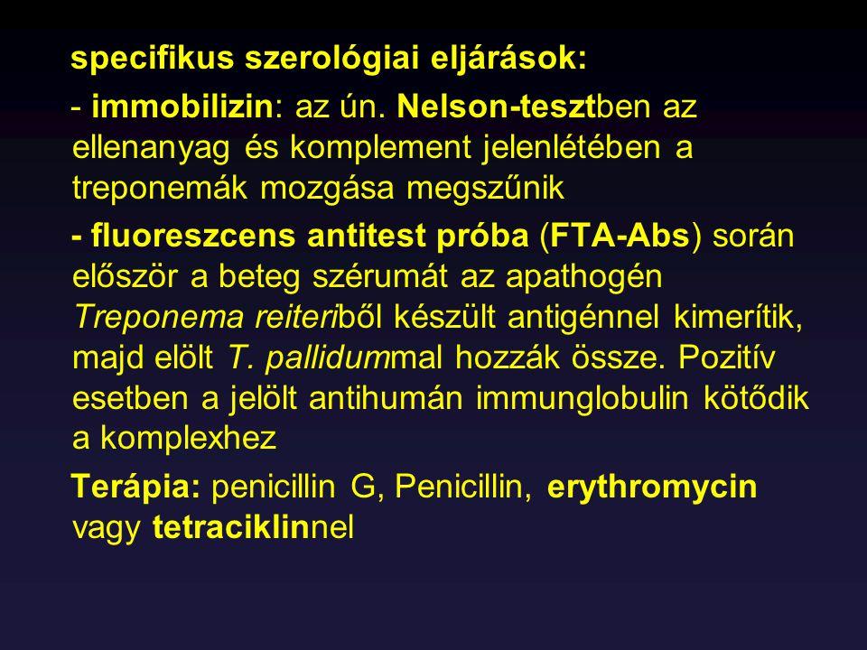 specifikus szerológiai eljárások: - immobilizin: az ún. Nelson-tesztben az ellenanyag és komplement jelenlétében a treponemák mozgása megszűnik - fluo