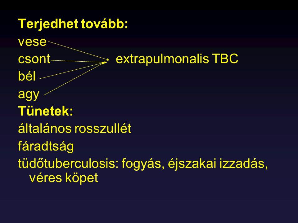 Terápia: kombinált kezelés, tartósan INH (izonikotinsav hidrazid) Rifampicin Pirazinamid Ethambutol PAS Megelőzés: BCG (bacillus Calmette-Guerin) kötelező védőoltás – élő avirulens (13 évig epetáptalajon passzázs, M.
