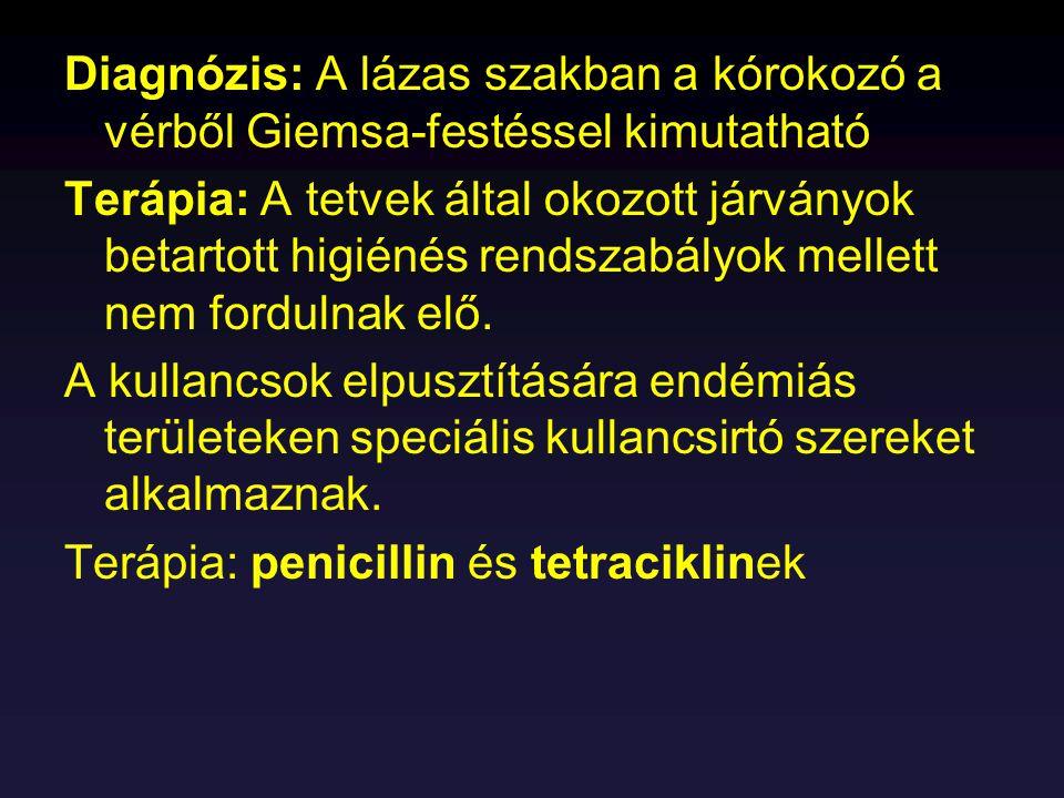 Diagnózis: A lázas szakban a kórokozó a vérből Giemsa-festéssel kimutatható Terápia: A tetvek által okozott járványok betartott higiénés rendszabályok