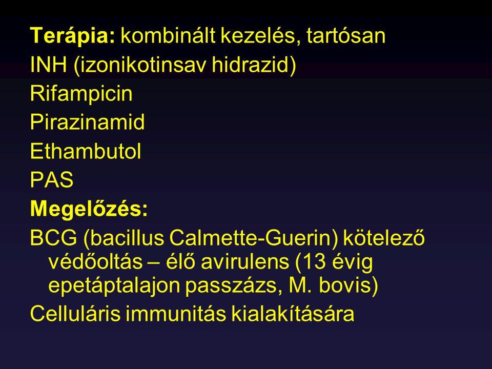 Patogenitás: C.