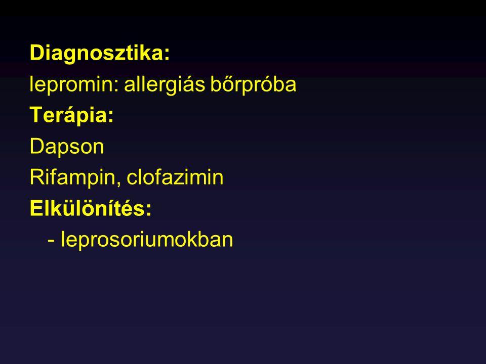 Diagnosztika: lepromin: allergiás bőrpróba Terápia: Dapson Rifampin, clofazimin Elkülönítés: - leprosoriumokban