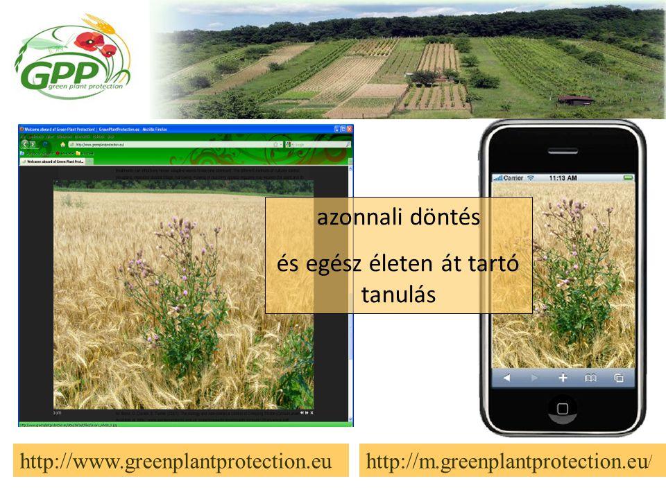 http://www.greenplantprotection.euhttp://m.greenplantprotection.eu / azonnali döntés és egész életen át tartó tanulás