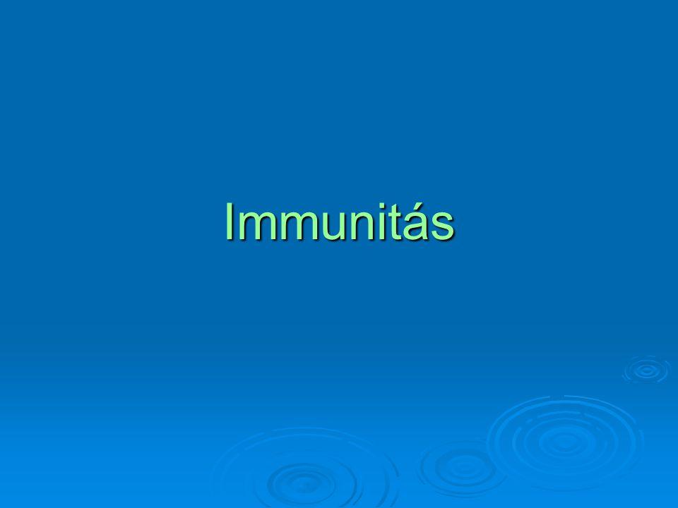 Immunglobulin szerkezete